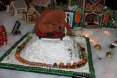 Discovery Science Center 2009 Gingerbread Contest